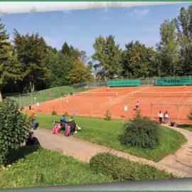 Bezirksmeisterschaften – Tennis vom Feinsten vom 30.5. – 02.6.